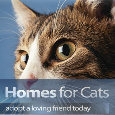 HOMES FOR CATS