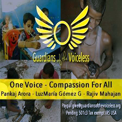GUARDIANS OF THE VOICELESS